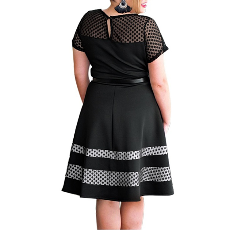 Black Dotted Mesh Dress with Belt