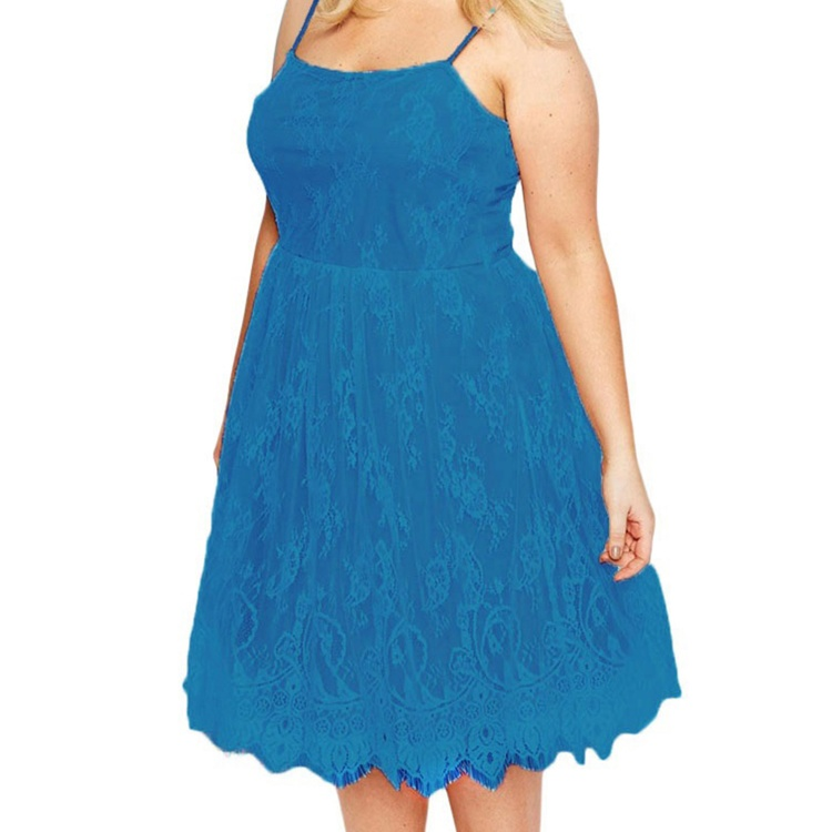Sweet Lace Skater Dress